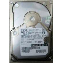 Жесткий диск 18.2Gb IBM Ultrastar DDYS-T18350 Ultra3 SCSI (Казань)