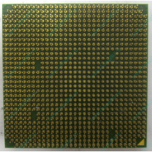 Процессор AMD Sempron 3000+ (1.6GHz) SDA3000IAA3CN s.AM2 (Казань)